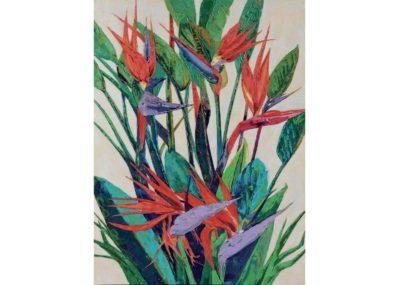 agave-quadri_0007_AG100055